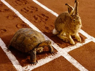 Slow and Steady Wins the Race Investing